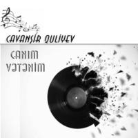 Cavanşir Quliyev Səngərlər