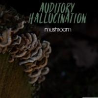Auditory Hallucination Aliens Rythmes