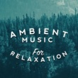 Entspannungsmusik,Relaxation&Relaxation and Meditation Ambient Music for Relaxation