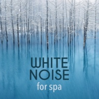 Natural White Noise for Sleep, Relaxation, Spa and Healing White Noise: 3 Microwaves