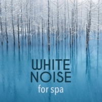 Natural White Noise for Sleep, Relaxation, Spa and Healing White Noise: Three Falls
