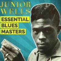 Junior Wells Essential Blues Masters