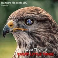 Joe Thorne Every Little Thing