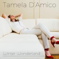 Tamela D'Amico Winter Wonderland