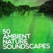 Various Artists 50 Ambient Nature Soundscapes: Spa Healing, Mindfull Relaxation, Meditative Zen