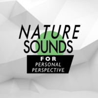 Ambient Nature Sounds Changing Waters