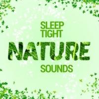 Nature Sounds Sleep Sleep Tight: Nature Sounds