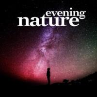 Deep Sleep Relaxation Evening Nature