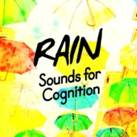 Rain Sounds for Meditation Rainfall on Skylight