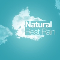 Natural Rain Sounds Natural Rain Rest