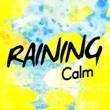 Calming Rain Sounds Filling the Stream