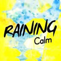 Calming Rain Sounds Raining Calm