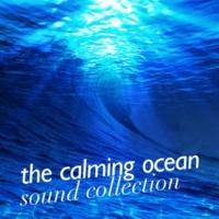 Ocean Sounds Collection The Calming Ocean Sound Collection