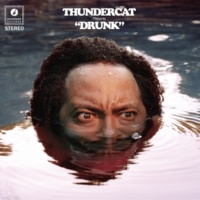 Thundercat Show You The Way