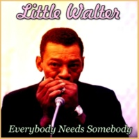 Little Walter Everybody Needs Somebody