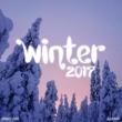 Ananda Project Street King Presents Winter 2017