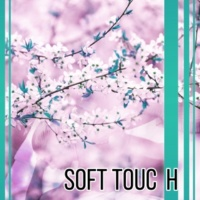 Spa Soft Touch  - Music for Massage, Spa, Wellness, Beauty Parlour, Relaxing Music Full of Nature Sounds