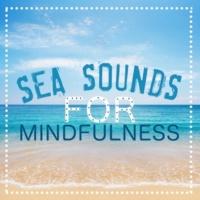 Calm Ocean Sounds,Ocean Beach Waves&Ocean Waves for Sleep Sea Sounds for Mindfulness
