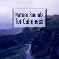 Sounds of Nature Nature Sounds for Calmness ‐ Music for Relaxation, Soothing Rain, Pure Mind, Deep Sleep, Peaceful Music, Total Relax