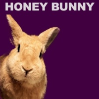 Honey Bunny Sweet Dreams  Everybody's Looking For Something