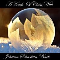 Johann Sebastian Bach Brandenburg Concerto No- 6 in B-Flat Major, BWV 1051 II- Andante
