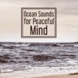 Rest & Relax Nature Sounds Artists Ocean Sounds for Peaceful Mind ‐ Stress Relief, Spirit Harmony, Beautiful Music, New Age Relaxation