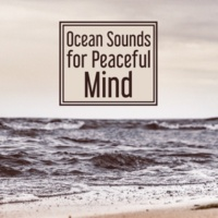Rest & Relax Nature Sounds Artists Healing Sea