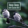 Nature Sounds Deep Sleep with Sounds Birds ‐ Music for Relaxation, Deep Meditation, Peaceful Mind, Calm Guitar, Restful Sounds