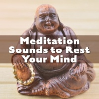 Meditation Music Masters Pure Relaxation