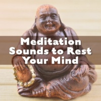 Meditation Music Masters Calming Waves