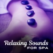 Echoes of Nature Relaxing Sounds for Spa ‐ New Age Relaxation, Music for Massage, Sounds to Calm Down, Rest in Sauna