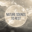 Sound Library XL Nature Sounds to Rest ‐ Relax Yourself, Music to Calm Down, New Age Sounds, Chilled Music, Healing Waves