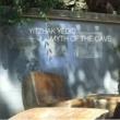 Yitzhak Yedid Myth of the Cave