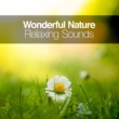 Deep Sleep Nature Sounds Wonderful Nature: Relaxing Sounds