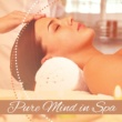 Meditation Spa Pure Mind in Spa ‐ Nature Sounds for Relaxation, Spa Music, Soothing Rain, Restful Water, Ocean Waves, Relaxed Mind, Calmness
