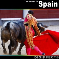 Digiffects Sound Effects Library Madrid, Spain Flamenco Nightclub with Music, Dancing and Hand Clap