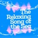 Water Sound Therapy Scheme Waves by the Seashore