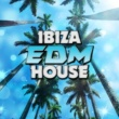 EDM House Hits Ibiza EDM House