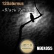 12Saturnus Black Raven