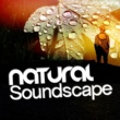 Natural Sounds,Nature Sounds&Sleep Sounds of Nature Natural Soundscape
