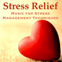 Sounds of Nature White Noise for Mindfulness Meditation and Relaxation & Best Relaxation Music & Oriental Music Collective Stress Relief: Music for Stress Management Techniques, Relaxation & Meditation to Live Happy