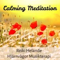 Healing Music Spirit & Dream Music & Calm Music for Studying Calming Meditation - Reiki Helande Hjärnvågor Musikterapi för Välbefinnande Minska Ångest med Natur Instrumental Ljud