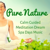 Nature Sounds Nature Music & Calm Music Sound & Guided Meditation Pure Nature - Calm Guided Meditation Dream Spa Days Music to Increase Brain Power Spiritual Training and Zen Style