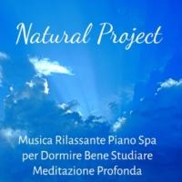 Nature Sounds & Deep Sleep Systems & Soothing Sounds Natural Project - Musica Rilassante Piano Spa per Dormire Bene Studiare Meditazione Profonda con Suoni Benessere Soft Calmanti