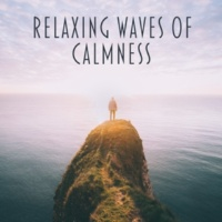 Sound Library XL Relaxing Waves of Calmness ‐ New Age Music, Nature Sounds, Forest Relaxation, Healing Sounds to Rest