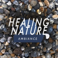 Ambiance nature,The Healing Sounds of Nature&Tranquil Music Sounds of Nature Healing Nature Ambiance