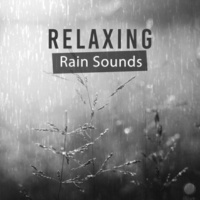 Rain Sounds Nature Collection Relaxing Rain Sounds ‐ Sounds to Rest, Calming Water Waves, Healing Therapy, Rain Music