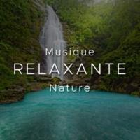 /Meditation Relax Club feat. New Age Naturists & Musique Piano & Musique Douce Ensemble Musique Relaxante Nature