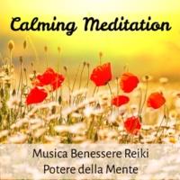 Relaxation Study Music & Relaxation Personal Guru & Serenità Salute e Benessere Calming Meditation - Musica Benessere Reiki Potere della Mente per Combattere l'Ansia con Suoni della Natura Strumentali