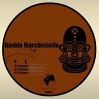 Davide Marchesiello Palenque
